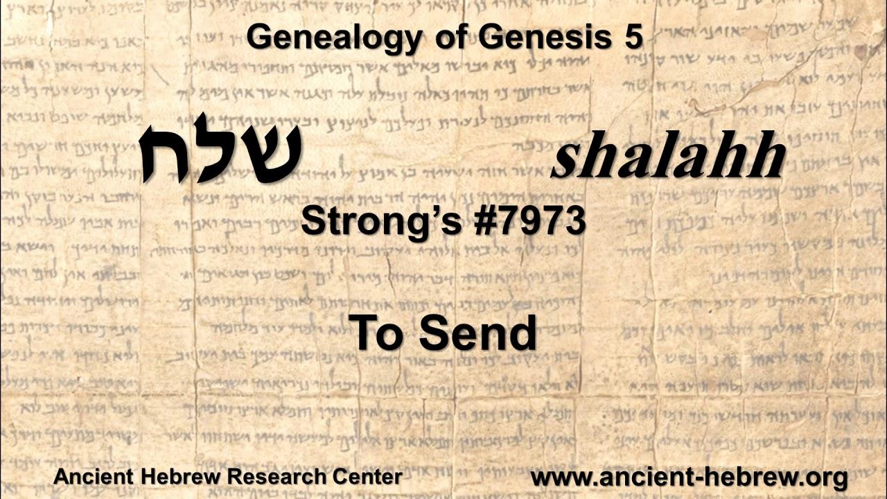 The Genealogy of Genesis 5