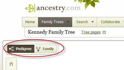 Breaking Through #1 Mexico Family Genealogy Research Challenge – Frustration