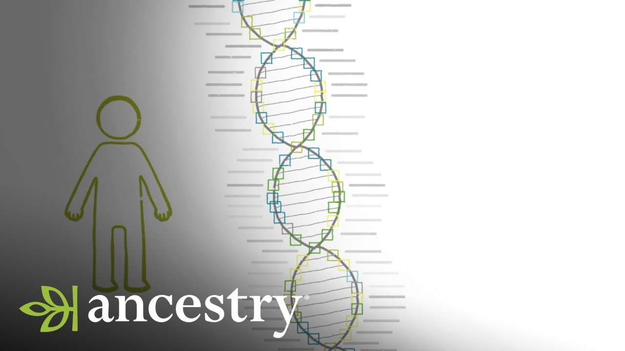 How Accurate are my AncestryDNA Results? | Ancestry
