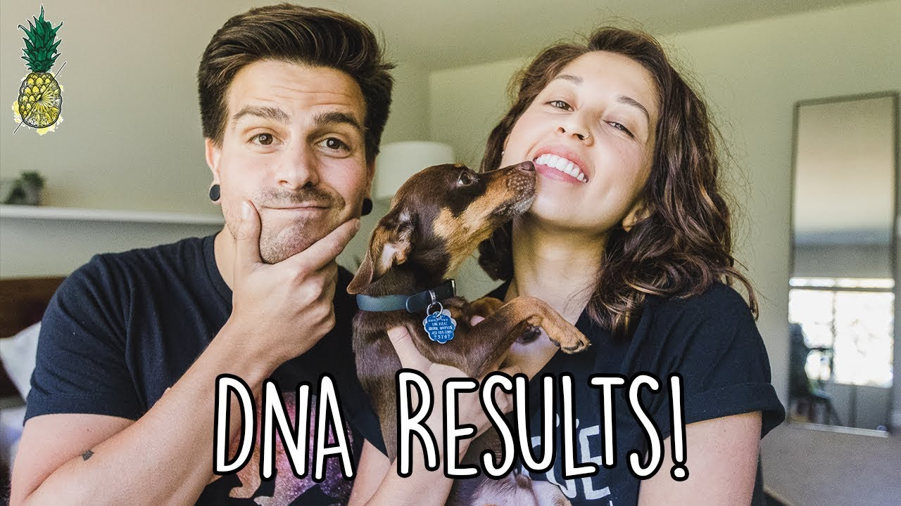 Our DNA Results | Reality vs. Expectation