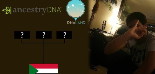Sudanese DNA Results | AncestryDNA | DNA.LAND | Haplogroup estimation