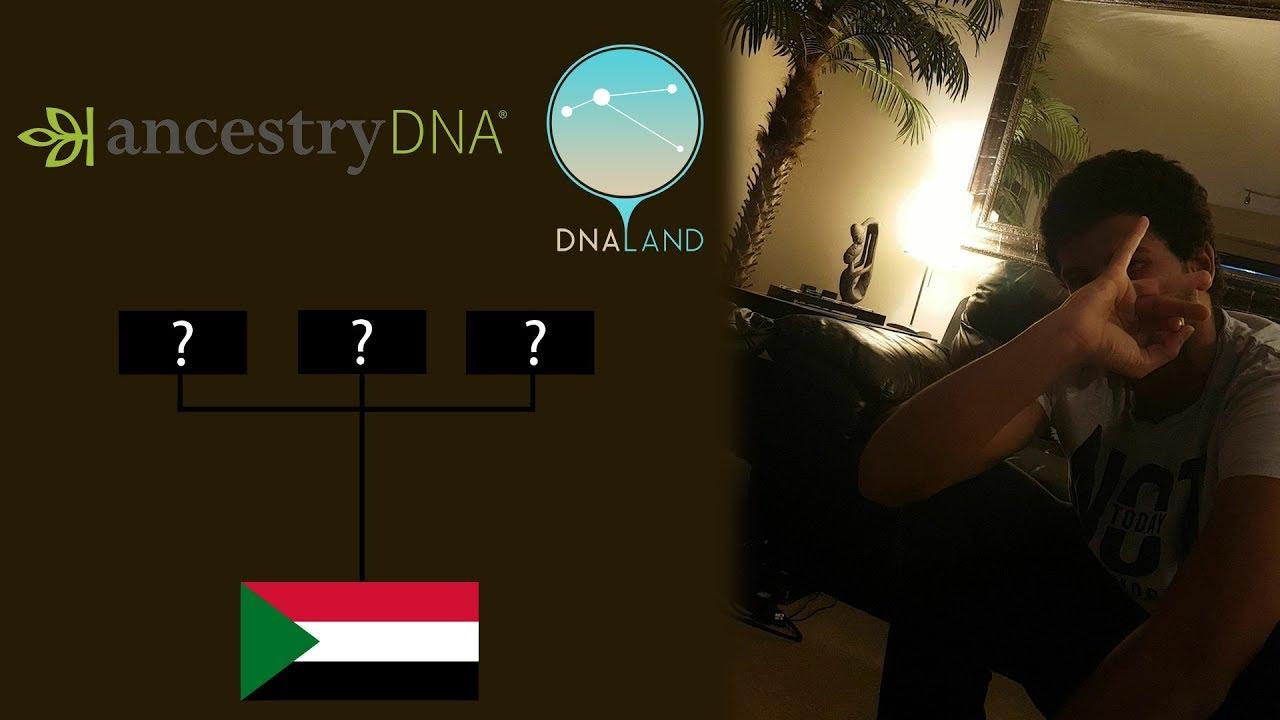 Sudanese DNA Results | AncestryDNA | DNA.LAND | Haplogroup estimation