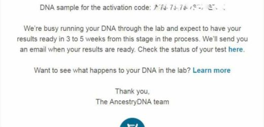 Getting back my ancestry DNA results